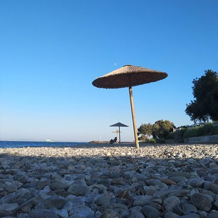 Η παραλία του Ταγματος είναι μια δημοφιλής επιλογή για πολύ κοντινές παραλίες από το κέντρο της Χίου.