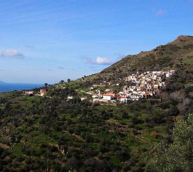Το Μελανιός στην Βοριοανατολική Χίο